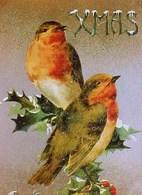 Belle Cpa NOEL , OISEAUX ROUGE GORGE Sur HOUX Fond Or Et Argent , BIRDS  PAIR Of ROBIN  On  HOLLY Silver/ Gold  Back - Birds