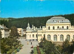 D1270 Vatra Dornei - Roumanie