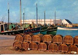 Carte , Lesconil , Le Port Vue Sur La Criée - France