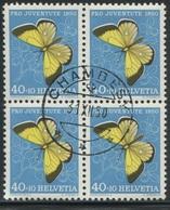 1875 - 40 Rp. Moorgelbling - Zentrumstempel CHAMBESY 31.XII.50 - Gebraucht