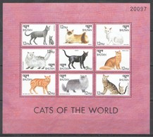 A816 BHUTAN FAUNA PETS CATS OF THE WORLD 1KB MNH - Hauskatzen