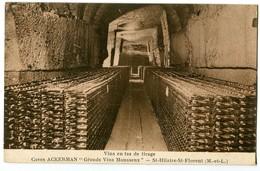 CPA 49 Maine Et Loire Saint Hilaire St Florent Caves Ackerman Vins En Tas De Tirage - France