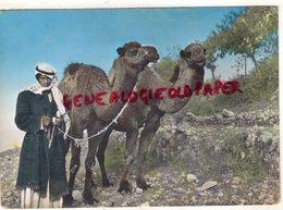 ASIE- LIBAN- LEBANON- A CAMEL DRIVER - CHAMELIER CHAMEAU - Liban