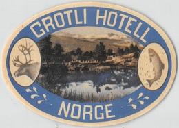 "D7858 "" GROTLI HOTEL NORGE  "" ETICHETTA ORIGINALE - ORIGINAL LABEL - Adesivi Di Alberghi"