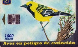 TARJETA TELEFONICA DE COSTA RICA. (CHIP). 10.00 AVES EN PELIGRO DE EXTINCIÓN, CHORCHA. 035. - Costa Rica