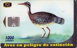TARJETA TELEFONICA DE COSTA RICA. (CHIP). 10.00 AVES EN PELIGRO DE EXTINCIÓN, GARZA SOL. 037 - Costa Rica