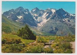 05 - Col Du Lautaret - Le Pic Gaspard Et La Meije Vus Du Jardin Alpin - éd. ALPAZUR N° 557 - 1975 - Other Municipalities