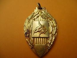 JUDO / Médaillon De Cou / FSGT/CHP/V De M ESS/ Bronze Doré / 1974    SPO268 - Martial Arts