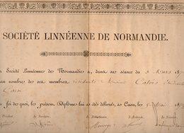 VP12.192 - CAEN 1879 - Diplôme - Société Linnéenne De Normandie  - Mr E.H CATOIS Etudiant - Diplômes & Bulletins Scolaires