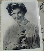 """FOTO ATTRICE  PIN UP Esther Williams """"Attrici Cinema N1965 GS1381 - Pin-ups"""