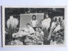 TOURANE - Marché Aux Fleurs - Vietnam