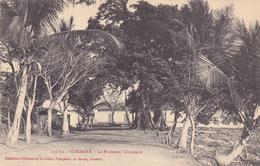 AFRIQUE,AFRICA,AFRIKA,guinée Française,CONAKRY,colonie ,cédée Par Les Anglais Aux Français En1891,boulevard Circulaire - Guinée Française