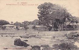 AFRIQUE,AFRICA,guinée Française,CONAKRY,colonie ,cédée Par Les Anglais Aux Français En1891,magasins,boulevard Circulaire - Guinée Française