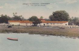 AFRIQUE,AFRICA,AFRIKA,guinée Française,CONAKRY,colonie ,cédée Par Les Anglais Aux Français En 1891,entrepot ,douane - Guinée Française