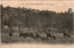 3ΩΔ 932. LE VIEUX CHAUMONT - AU PATURAGE - Chaumont