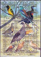 Eritrea 1998,  Birds 9v M/s 2 + 2 S/S. - Eritrea
