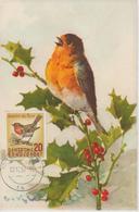Carte Maximum Oiseaux 1957 Rouge-Gorge 147 - Maximumkarten (MC)