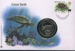WWF NUMISBRIEF, Schildkröte / COIN COVER, BERMUDA, Turtle /  ENVELOPPE NUMISMATIQUE, Tortue  1986 - W.W.F.