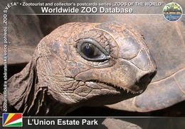 026 L'Union Estate Park, SC - Giant Tortoise (Aldabrachelys Gigantea) - Seychelles