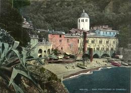 San Fruttuoso (Genova) Scorcio Panoramico, Partial View, Coin - Genova (Genua)