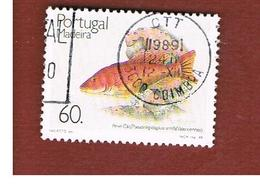 MADEIRA  - SG 251 -  1989 FISHES   -    USED - Madeira