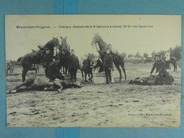 Brasschaat Polygone Chevaux Dressés De La 3e Batterie à Cheval (2e Don De Cavalerie) - Brasschaat