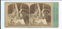 PHOTO STEREO Circa 1860 FURNE Fils Et TOURNIER.. N 7.. SUJETS POMPADOUR. Le Nid De Fauvette - Photos Stéréoscopiques