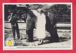 233903 / Advertising - D-r. PAVEL PATEV , 130 YEARS Sofia Zoo , Zoological Garden In Sofia , Animal Elephant , Bulgaria - Elefanten
