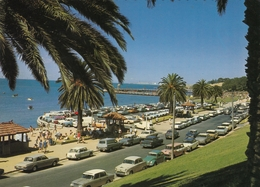 Geelong - Eastern Beach - Geelong