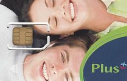 Poland - Plus (standard SIM) - GSM SIM  - Mint - Poland