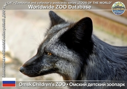 "307 Omsk Children's ZOO, RU - Silver Fox (Vulpes Vulpes F. Domestica ""Silver Fox"") - Russie"