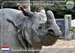 365 DierenPark Amersfoort, NL - Indian Rhinoceros (Rhinoceros Unicornis) - Amersfoort