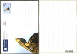 Island Iceland Islande 2011 Postcard Postkarte Bird Vogel Oiseau Mint Postfrisch Neuf MNH ** - Entiers Postaux