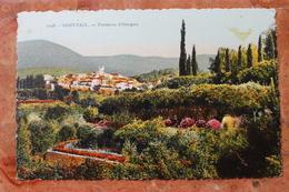 SAINT PAUL (06) - PLANTATION D'ORANGERS - Francia