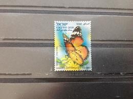 Israël - Vlinders 2011 - Israël