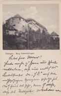 Künstler AK  Tübingen ,Burg Hohen Tübingen.gelaufen 1928..( OR 14 ) - Tuebingen