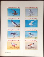 Grunay Scotland 1981 Sea Birds Sheetlet MNH - Vogels