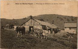 CPA Dans Les Hautes-Vosges Paturages Et Métairie Au Ballon D'Alsace (722727) - France