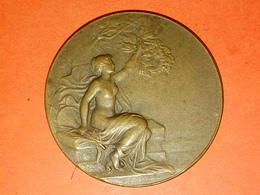 ANCIENNE MÉDAILLE BRONZE CAISSE DES ECOLES PARIS à Daté Graveur CH. PILLET Diamètre 36 Mm 21.14 Gr. - Other