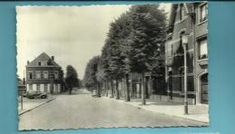 ** .   BEERSE -Lindenlaan - Beerse