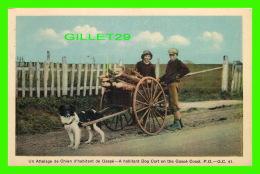 AGRICULTURE, ATTELAGES DE CHIENS - UN ATTELAGE DE CHIEN D'HABITANT DE GASPÉ, QUÉBEC G. C. No 41 -  H. V. HENDERSON - - Attelages