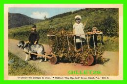 "AGRICULTURE, ATTELAGES DE CHIEN - A HABITANT "" DOG HAT-CART "" GROUP, GASPÉ QUÉBEC - ANIMÉE D'ENFANTS - H. V. HENDERSON - - Attelages"