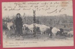 CORREZE---Vieille Bergere Et Se Moutons---précurseur - France
