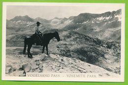 YOSEMITE PARK - Vogelsang Pass - Yosemite
