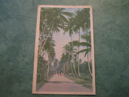BRITISH GUIANA - Postcards