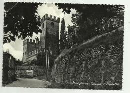CONEGLIANO VENETO - CASTELLO  VIAGGIATA FG - Treviso