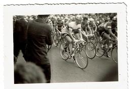 Petite Photo C1955 - Course Départ Nice - Rik Van Looy & Louison Bobet - 2 Scans - Sports