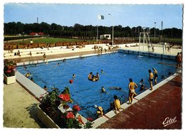 78  RAMBOUILLET  -  LE CENTRE MUNICIPAL DE NATATION  -  CPM 1960/70 - Rambouillet