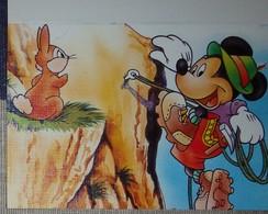 Petit Calendrier De Poche  1993 Mickey Escalade Disney - Coiffeur Illiers Combray Eure Et Loir - Tamaño Pequeño : 1991-00