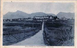 Colloredi Di Montalbano Viaggiata 1938 - Udine